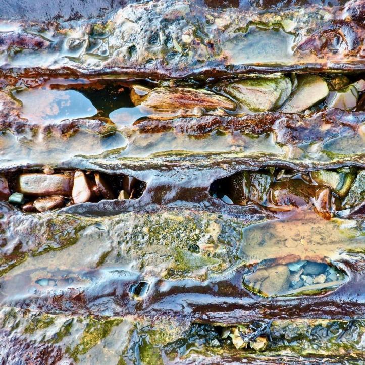 6Robin MacDonald -Foley_Rust Cycle_photo_18x18 (2)