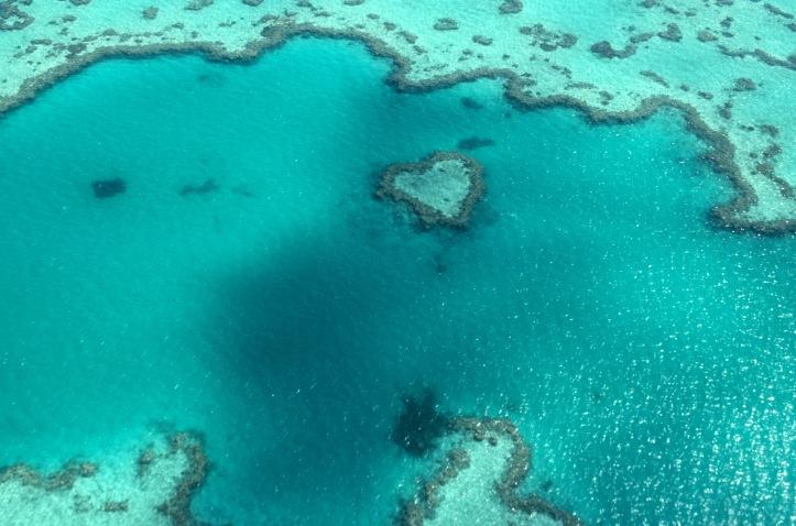 Great Barrier Reef Australia 300 dpi 7in